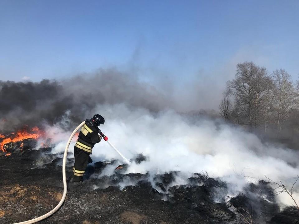 В Орле и области зафиксировали первые случаи поджога сухой травы и мусора. Фото: ГУ МЧС России по Орловской области
