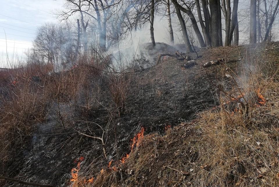 Только за последние сутки пожарным пришлось 6 раз тушить охваченный огнем сухостой