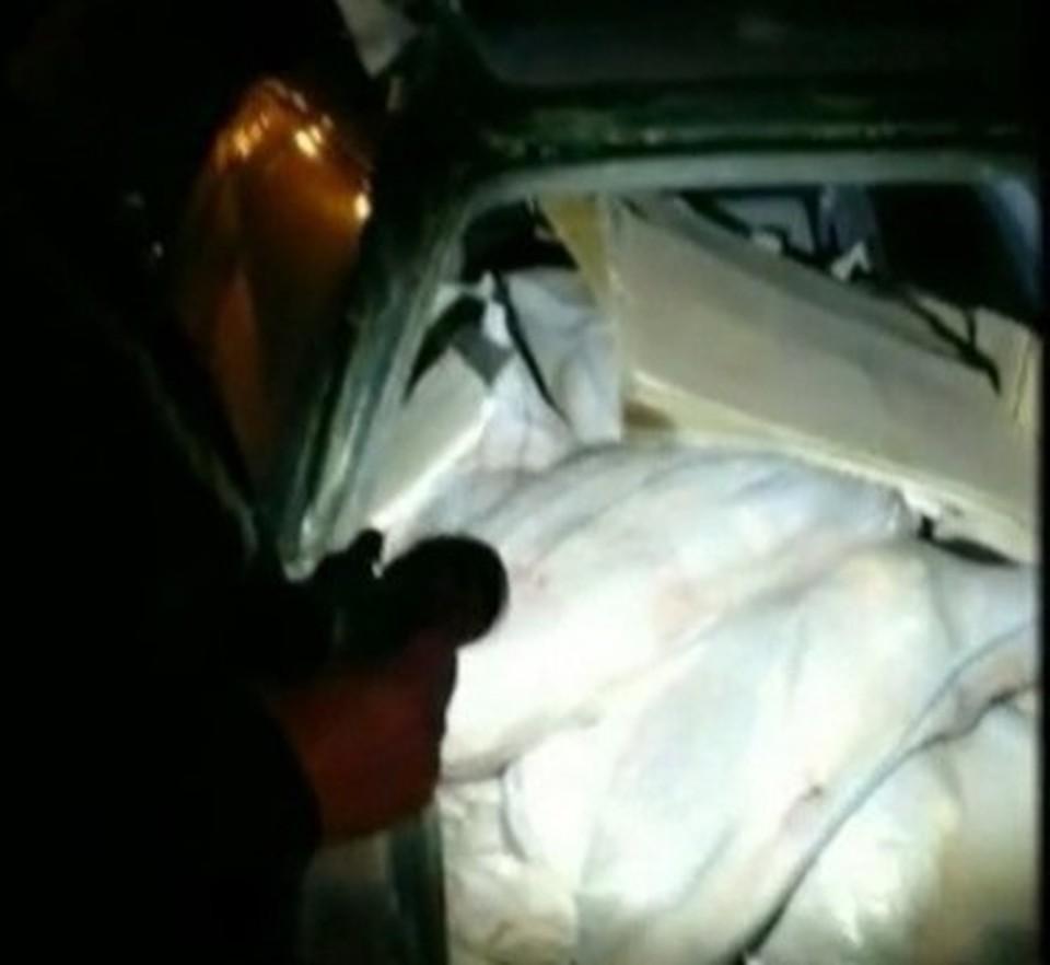 В Астраханской области пресекли реализацию немаркированной рыбной продукции