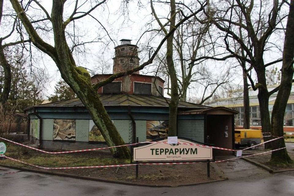 Доступ для посетителей в террариум был закрыт еще осенью прошлого года.