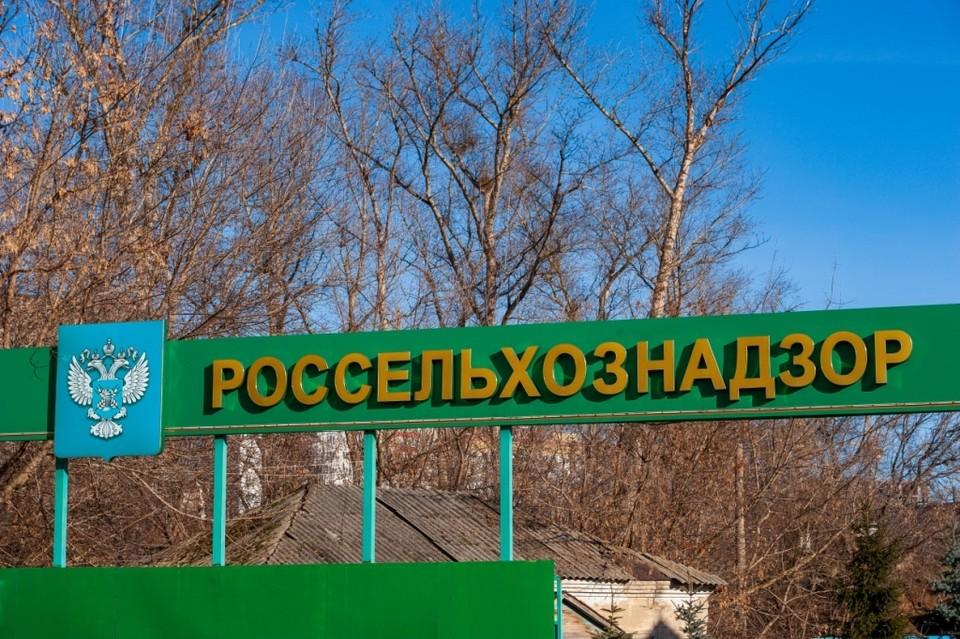 С начала 2021 года в страны ЕС Орловская область отправила 95 партий дрожжей, барда и шрота