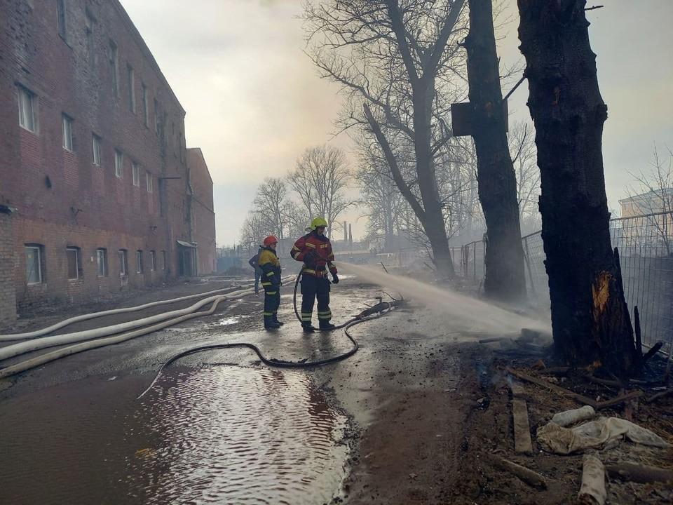 """Жар от пламени подпалил деревья, стоящие в десятках метров от """"Невской мануфактуры""""."""