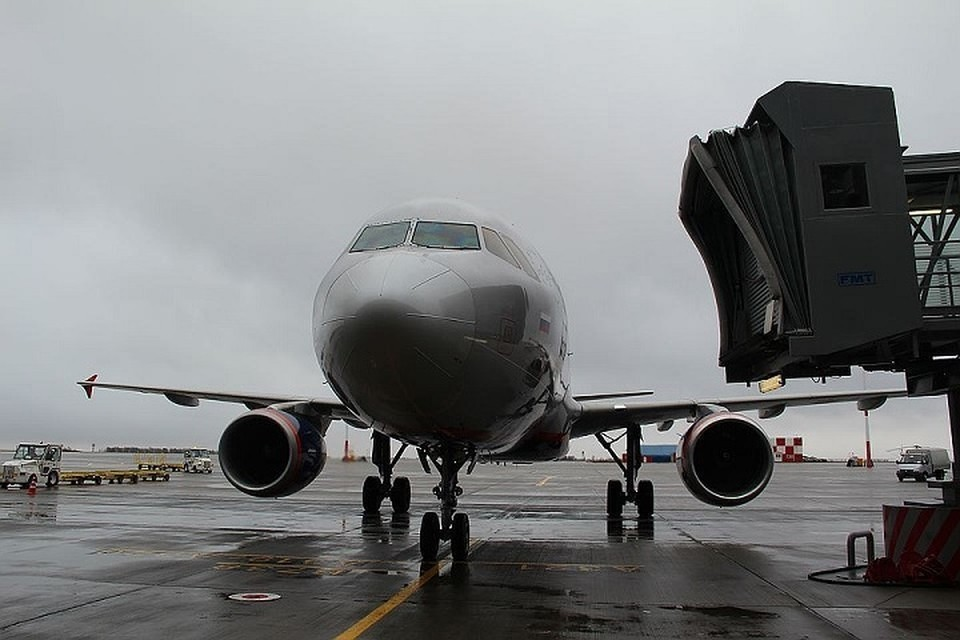 Как утверждается, кражи совершались из грузовых отсеков авиалайнеров.