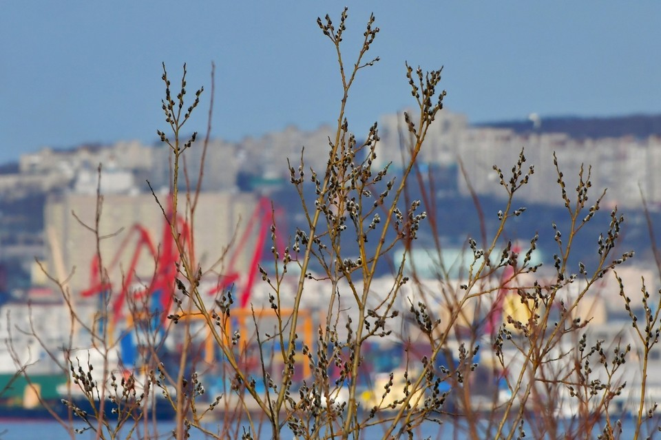 В Мурманской области весенняя погода сменится почти зимней.