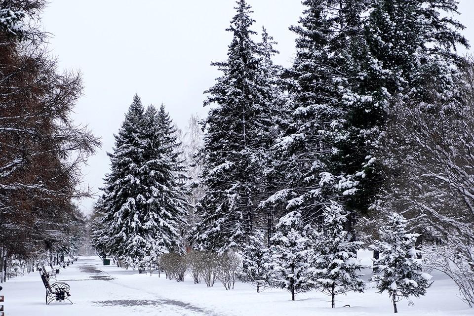 Когда ждать тепло? В Иркутске выпал снег и по-мартовски зябко.