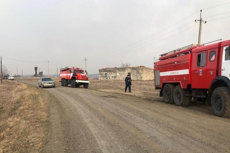 В Новосибирской области из-за пала травы в Венгеровском районе едва не загорелась деревня. Фото: ГУ МЧС по НСО