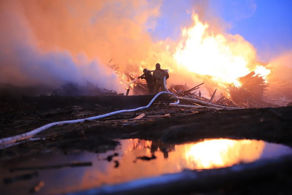 Пожарным удалось остановить распространение огня на огромной площади