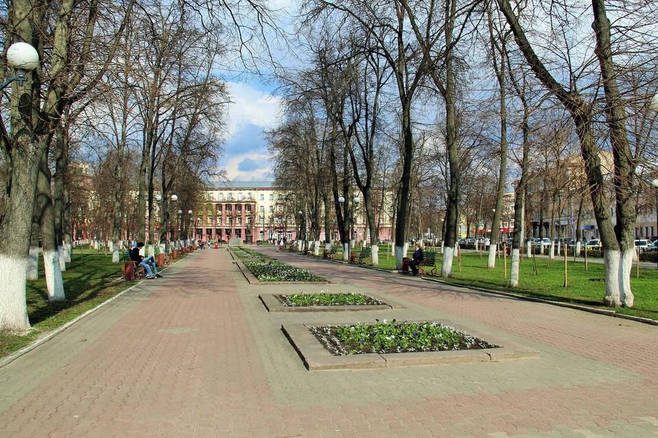 В сквере танкистов уже высадили несколько тысяч цветов на клумбы. Фото: пресс-служба администрации Орла