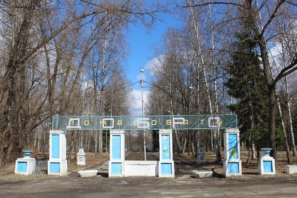 В Брянске в список для голосования по благоустройству включили парк в Белых Берегах.