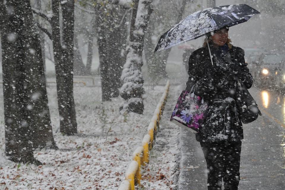 В Брянской области 24 апреля ожидают мокрый снег.