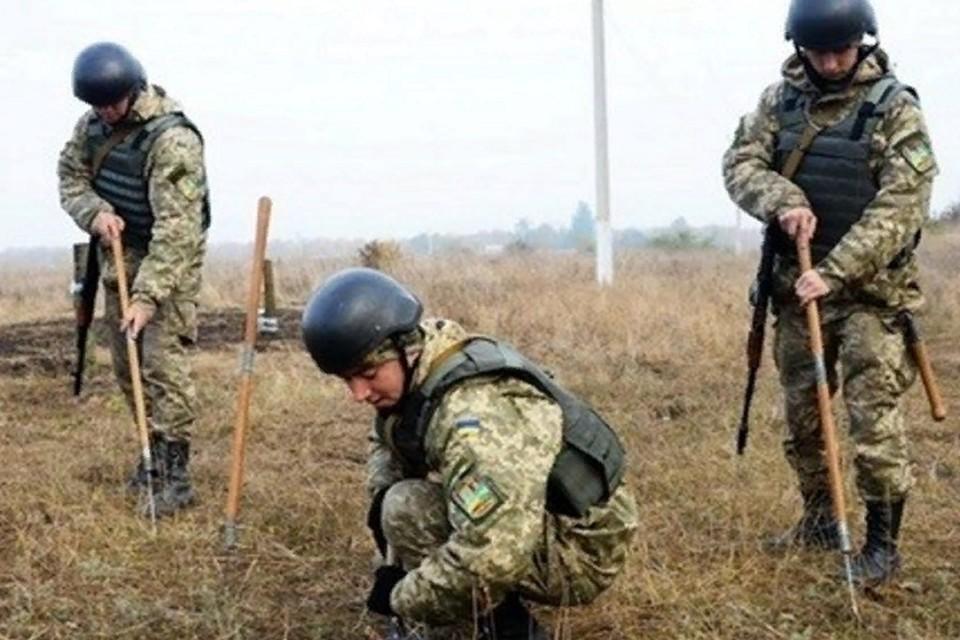По приказу командования украинские военные уточняли карту минных полей. Фото: штаб «ООС»