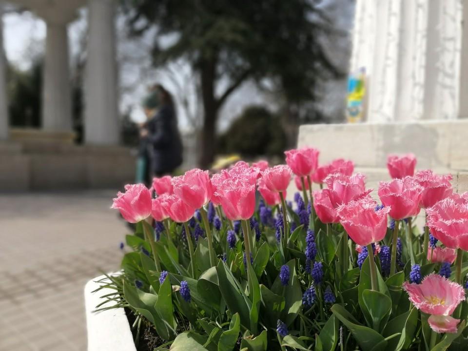 В Севастополе днем тепло до +14°.
