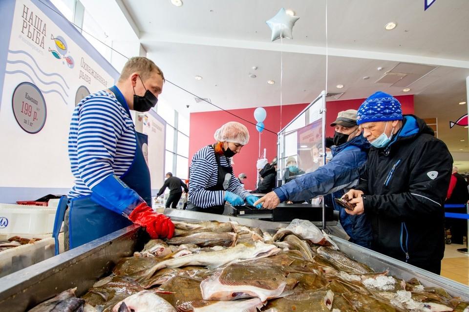 Самой популярной рыбой на ярмарке стала треска. Фото: правительство Мурманской области