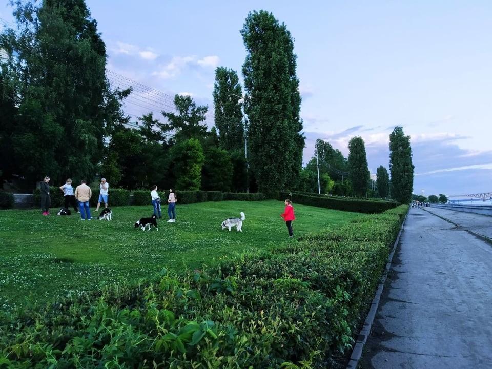 До середины недели в Саратовской области будет прохладно, дальше потеплеет