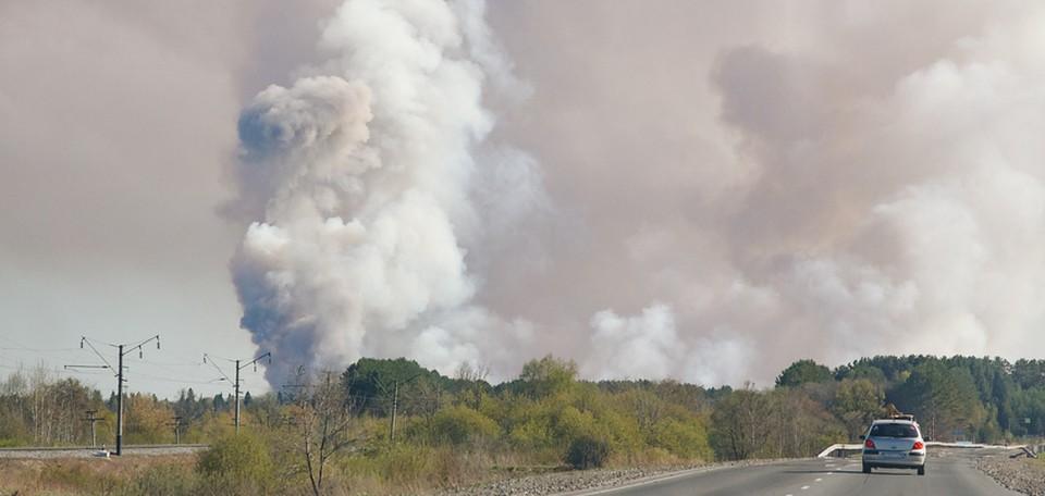 Поверхностный сбор снарядов в Пугачево должны завершить в июле 2021 года