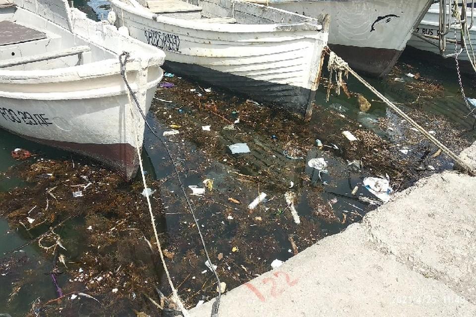 По мнению эколога, самая большая проблема в том, что в Крыму нет служб, которые смогли бы очищать берег от мусора