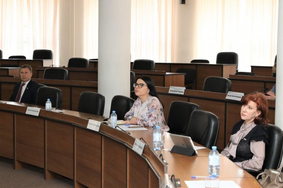 В ходе обсуждения члены постоянной комиссии внесли предложения по целям и задачам новой организации. Фото: городская дума Нижнего Новгорода