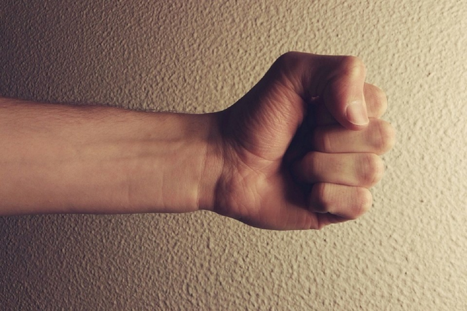 Мужчина напал с кулаками на надоедливого гостя. Фото: pixabay.com