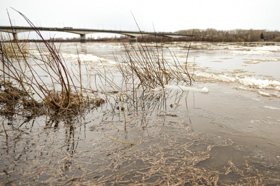 За минувшие сутки уровень воды в Вятке поднялся на 14 см. Фото: admkirov.ru
