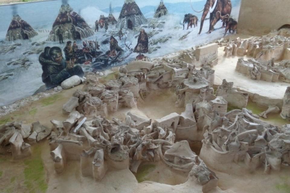 В Брянской области в 2021 году 2,5 миллиона рублей направят на реконструкцию музейя «Палеолит».