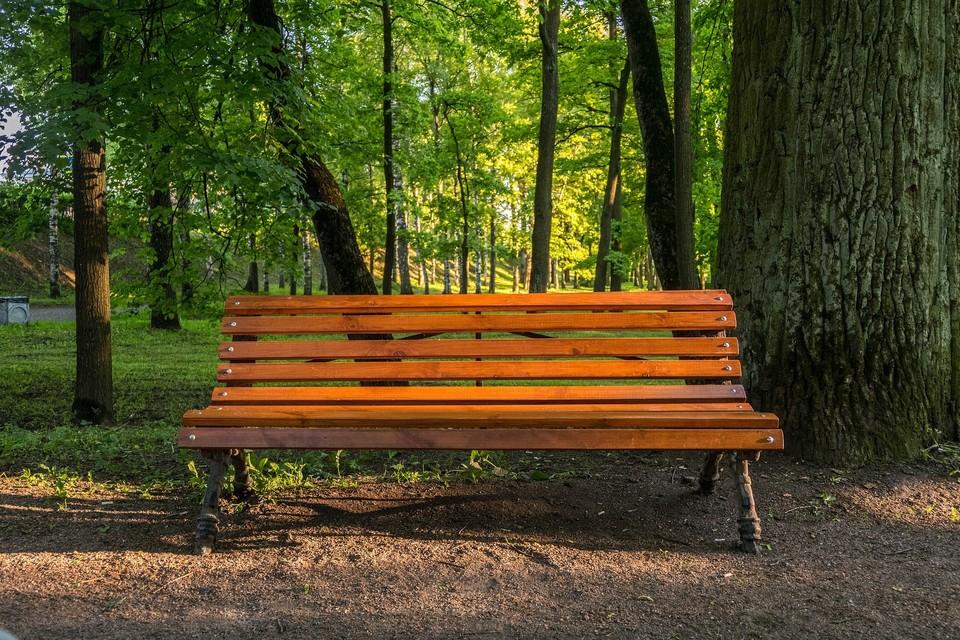 Парк имени Горького в Алматы будет закрыт 1 мая на дезинфекцию