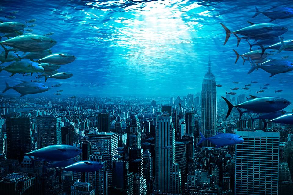 Нашим потомкам будет где понырять, что осмотреть под водой.