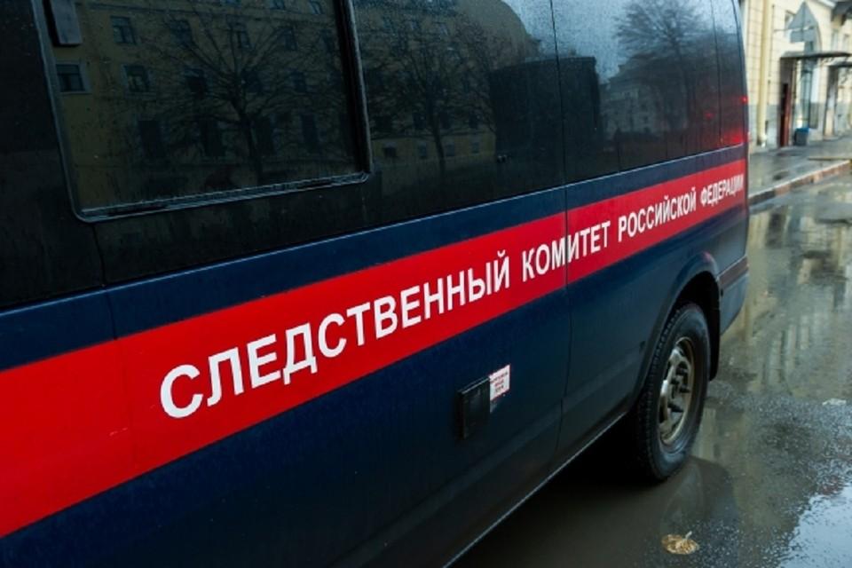 Следователи начали проверку после того, как трехлетняя девочка пострадала в детском лабиринте в Новосибирске.