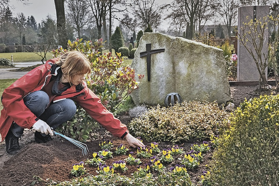 На могилы родных мы приезжаем нечасто, и не у всех есть возможность ухаживать за цветами.