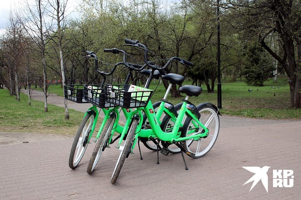 Трое молодых людей пытались угнать зеленый велосипед