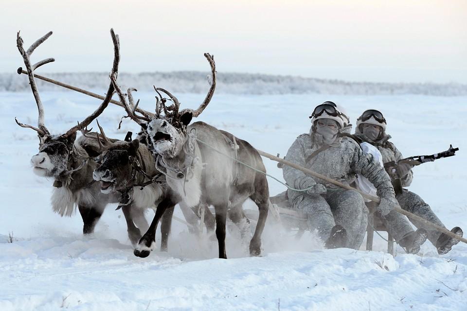 Кто владеет Арктикой, владеет миром. Фото: Лев Федосеев/ТАСС