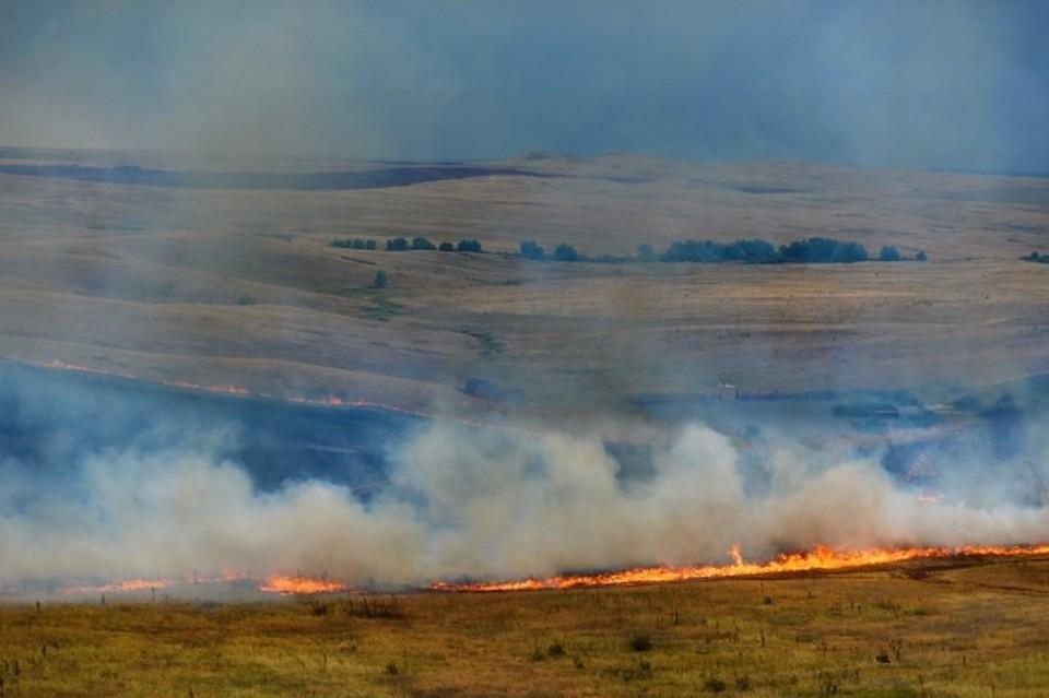 В Смоленской области уменьшилось количество палов травы.