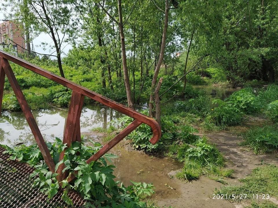В Туле канализационные стоки «разбавили» воды Щегловского ручья