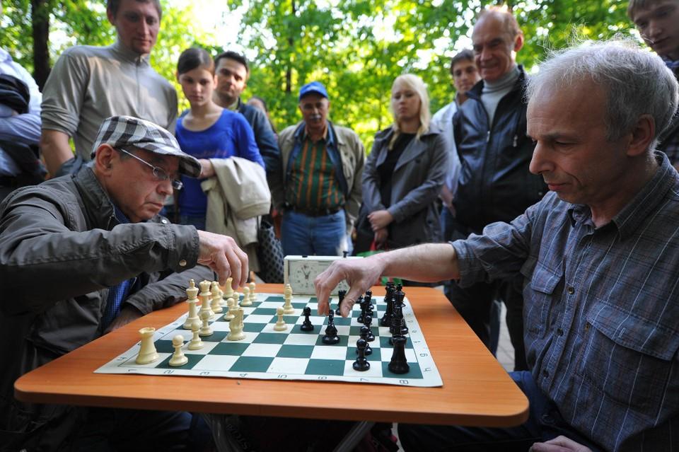 """Многим отлично известны классические шахматы, но есть и множество других вариантов, в том числе с """"медведями""""."""