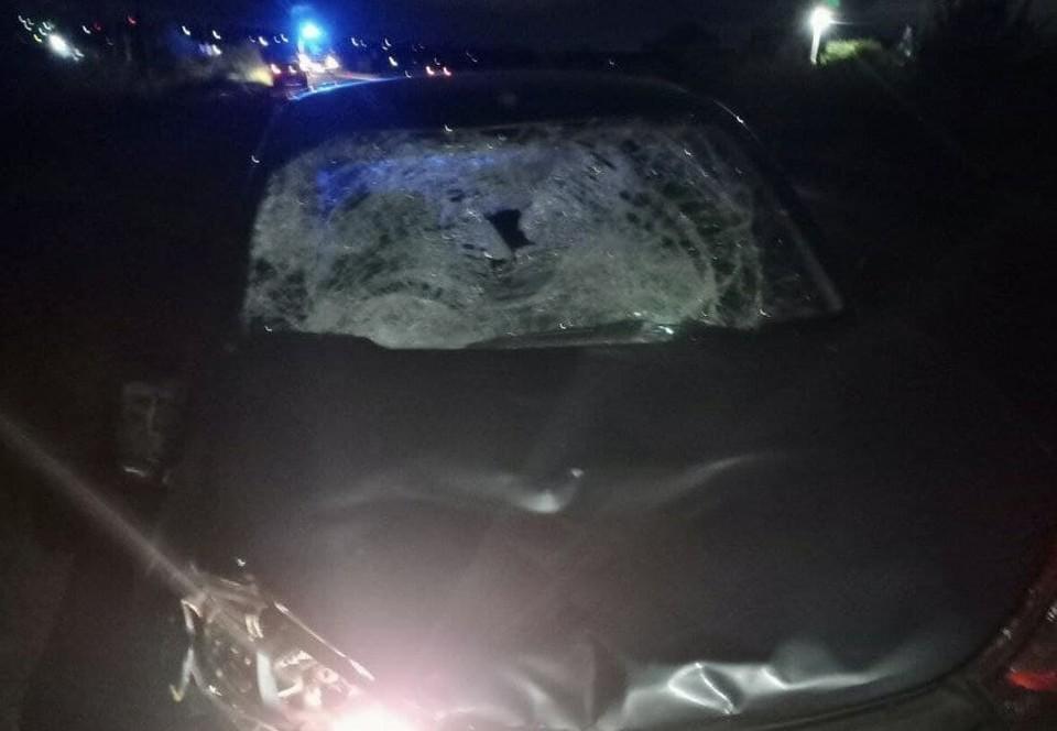 Машина сбила двух пешеходов на Кумысной поляне