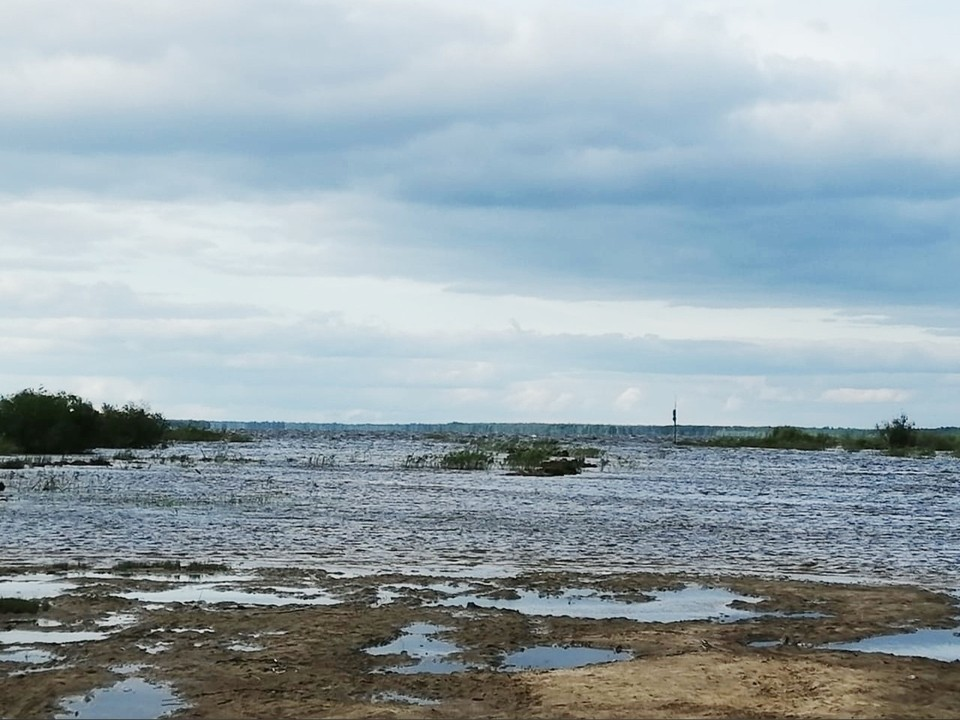 Поиски ведутся с воды и с использованием квадрокоптера. Фото: страница Вологодский район ВКонтакте