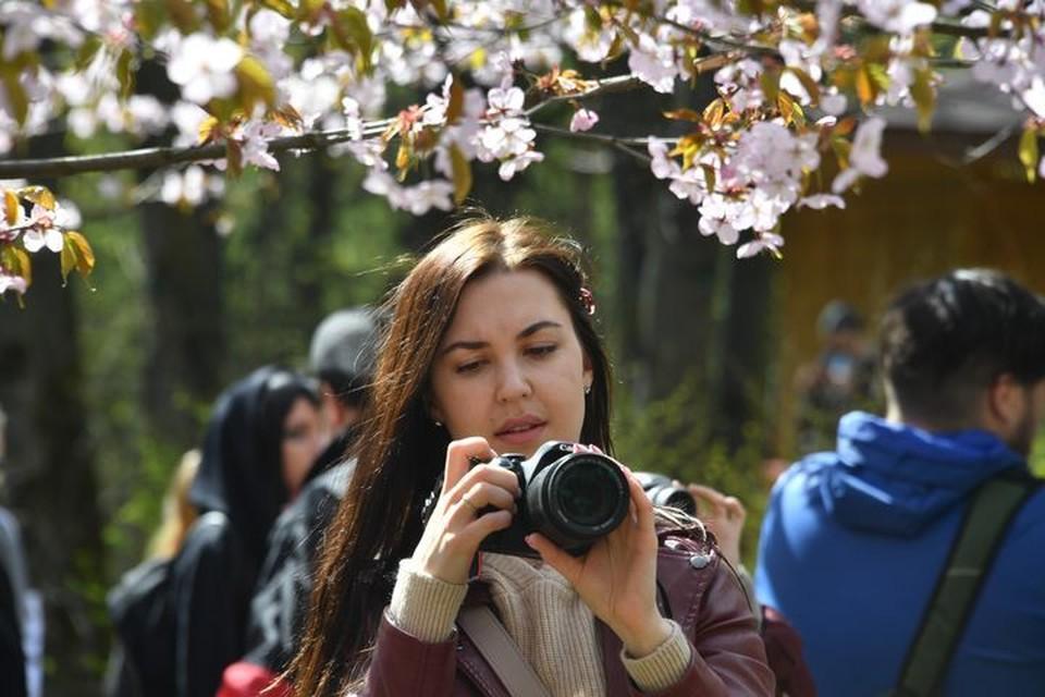 Пушистик стал главным объектом для фотосъемок.