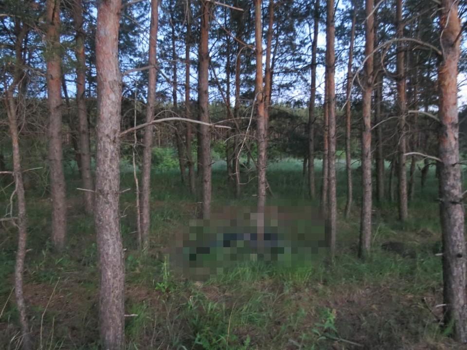 В лесу нашли тело мужчины