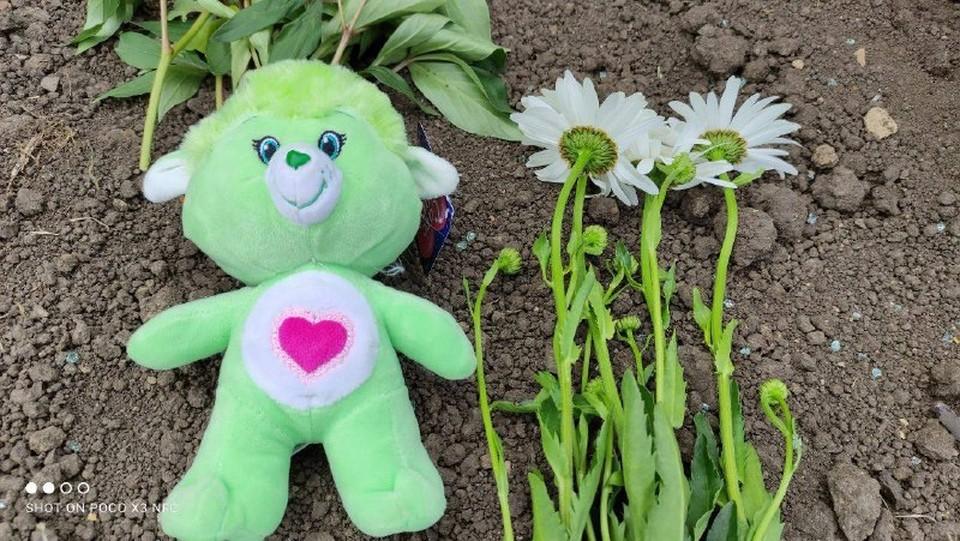 На место трагедии люди несут цветы и мягкие игрушки... (Фото: соцсети).