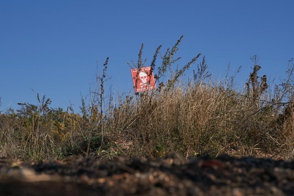Земля рядом с линией разграничения буквально усеяна неразорвавшимися боеприпасами и минами. Фото: Пресс-центр штаба ООС