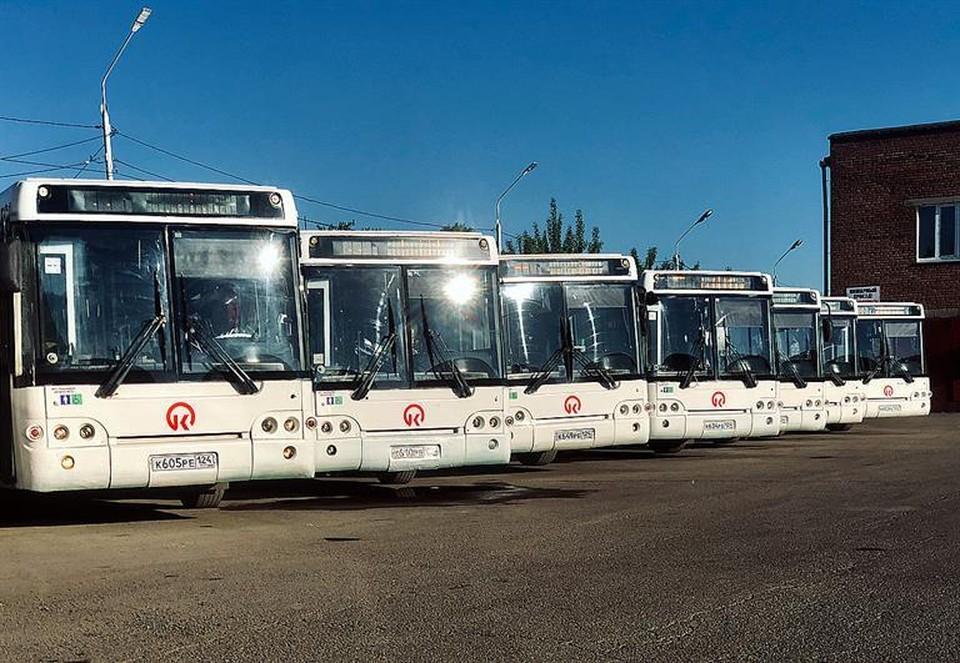 У автобусов высокий класс экологичности Евро-4 и Евро-5. Фото: пресс-служба администрации Красноярска
