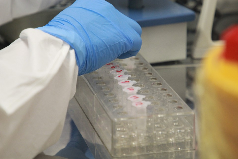 За 24 часа в лабораториях проверили 10 946 анализов