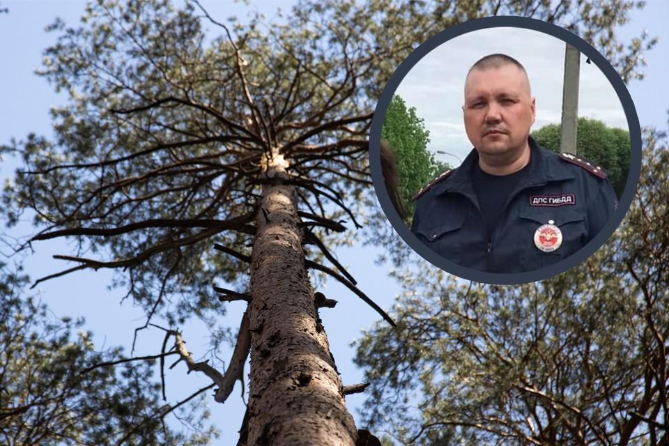 Сотрудник полиции Андрей Морозов смог определить по разговору с мальчиком, где они находятся.