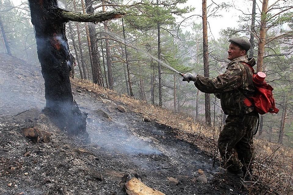 В Иркутской области горят леса.