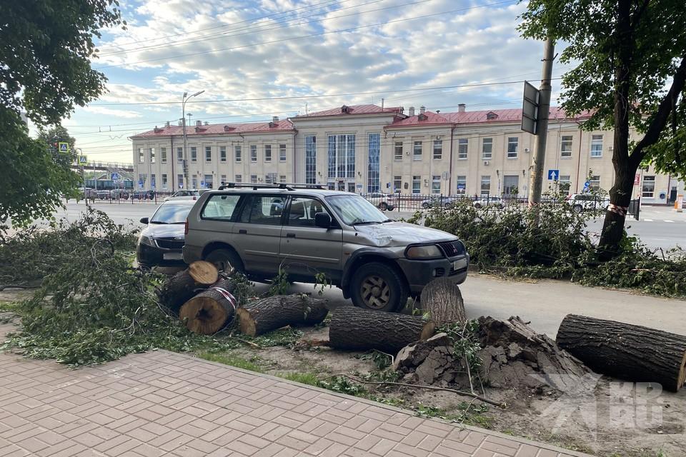 В центре Рязани не могут убрать бревна дерева, которое сняли с иномарки.