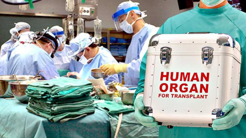 В Лозенецкой больнице за два года провели 14 трансплантаций почек. Фото: strana.ua