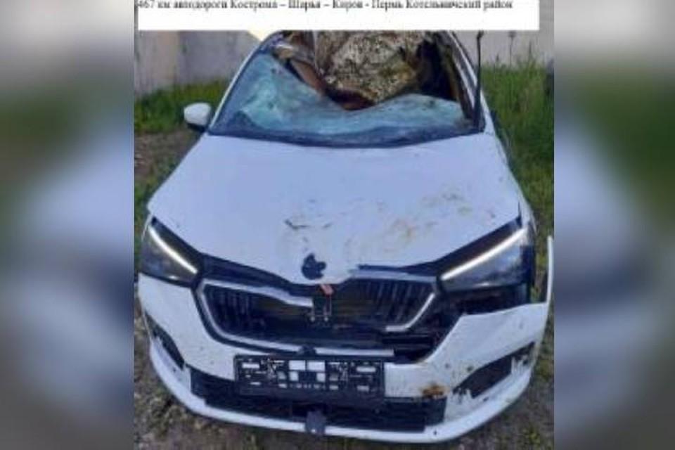 При столкновении с лосем автомобиль «Шкода Рапид» получил серьезные повреждения. Фото: vk.com/gibdd43