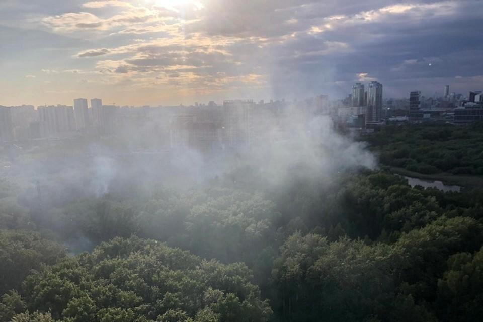 Фото: пресс-служба Парка Маяковского