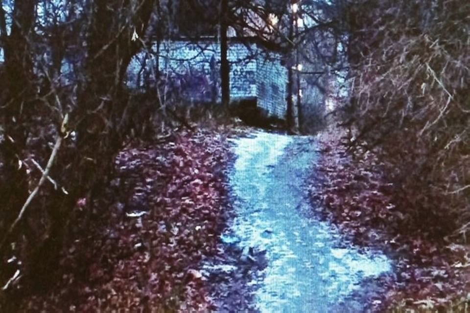 Преступление было совершено в лесополосе недалеко от улицы Железнодорожной