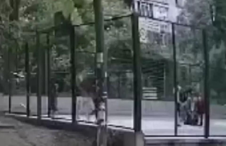 Инцидент произошел на спортивной площадке (Фото: скрин с видео).