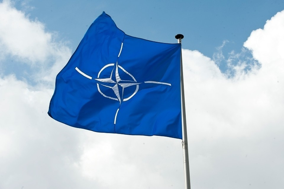 Германия заявила, что вопрос вступления Украины в НАТО не стоит на повестке дня